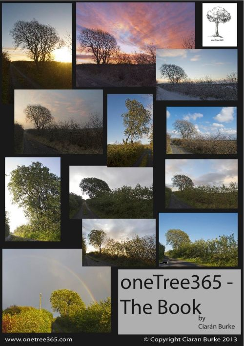 Sample cover for One Tree 365.