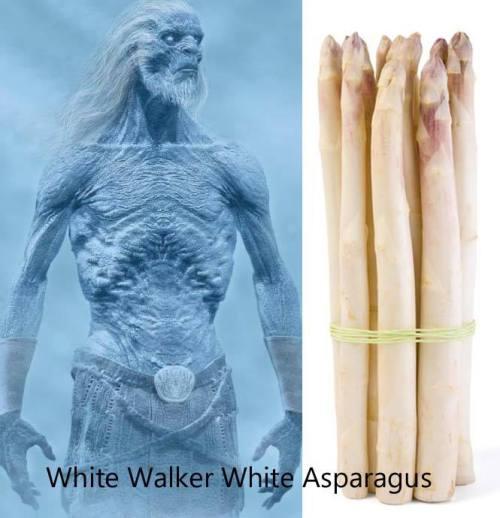 White Walker White Asparagus by Jessy Randall