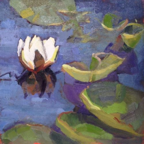 """Waterlily in Sandra's Garden"" by Karen Storm"