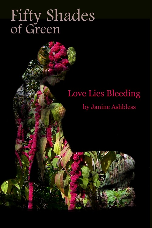 "Beautiful cover for ""Love Lies Bleeding"" created by Zora Knauf."