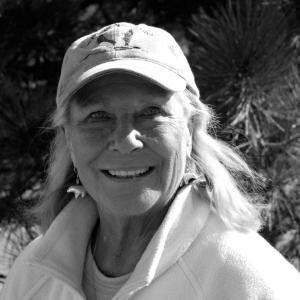 Patricia Nolan
