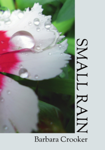 Small Rain by Barbara Crooker