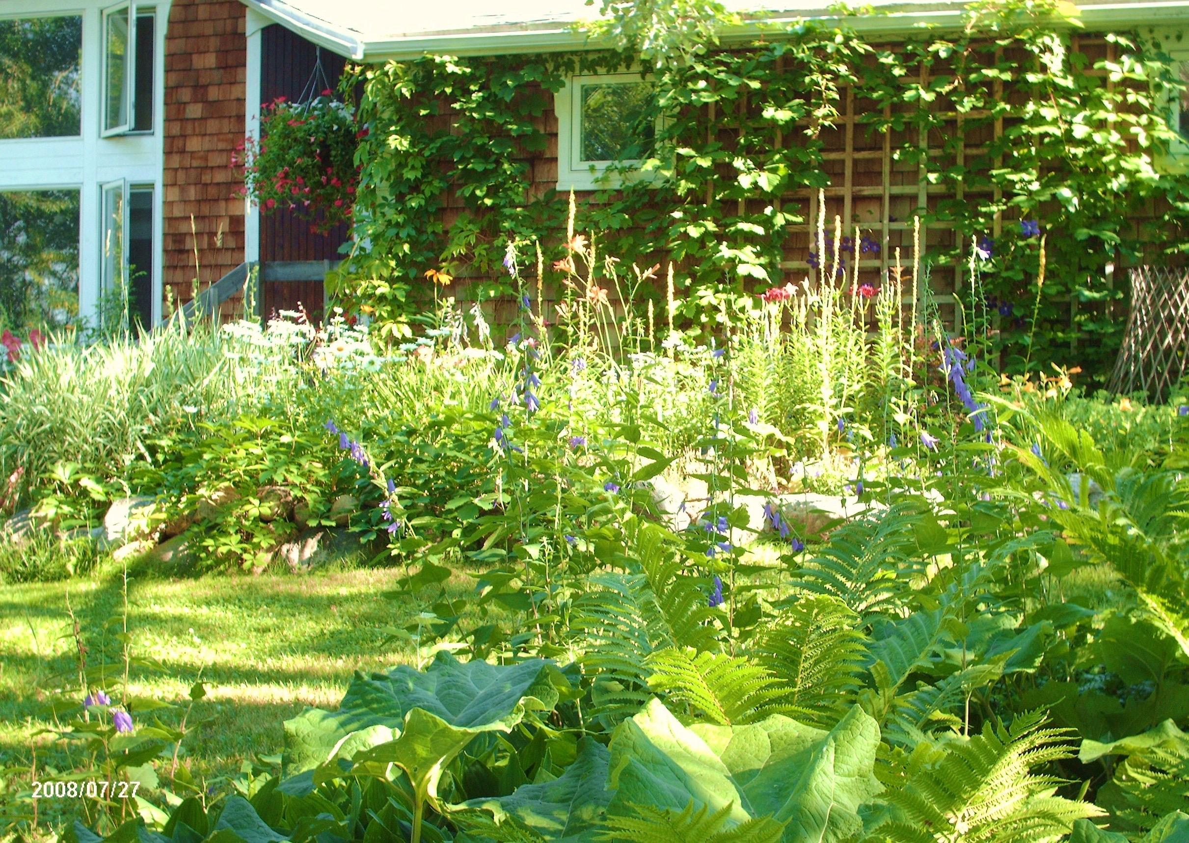 garden in the morning 006