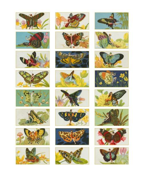 Butterfly women (2)