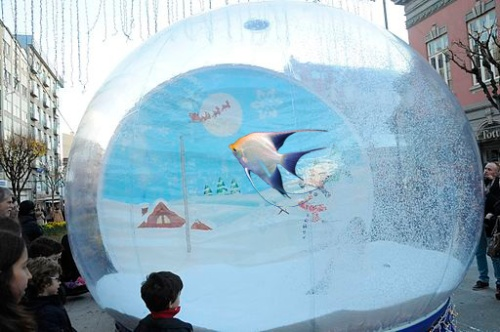snow_globe_angel_fish
