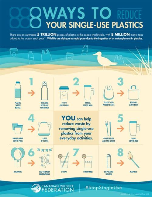 Eight-ways-to-reduce-single-use-plastics