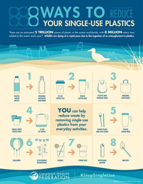 Eight-ways-to-reduce-single-use-plastics