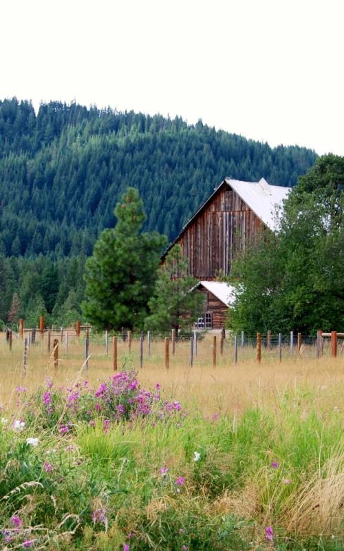 Broadfork-farm-barn-color-Darrell-Salk
