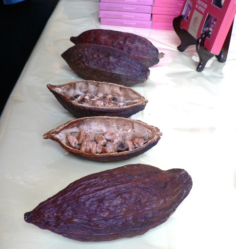 Chocolate-Bean-Chocoladeboon-by-Oriel-WC (2)